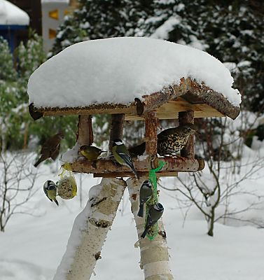 hamburg fotos im winter bilder schneelandschaft. Black Bedroom Furniture Sets. Home Design Ideas